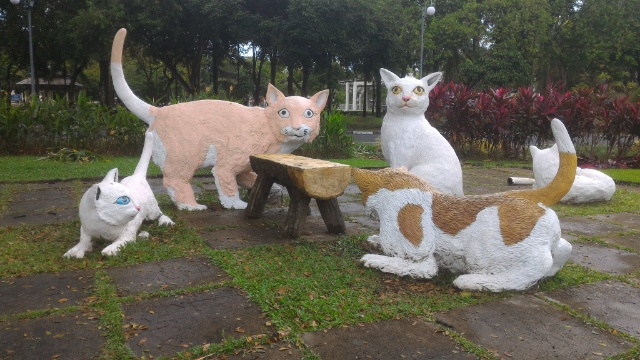 猫の街 クチン観光