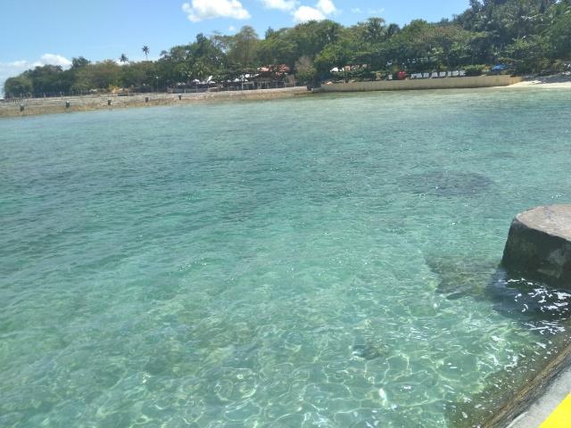 ドリアンと美しい海 ダバオ観光